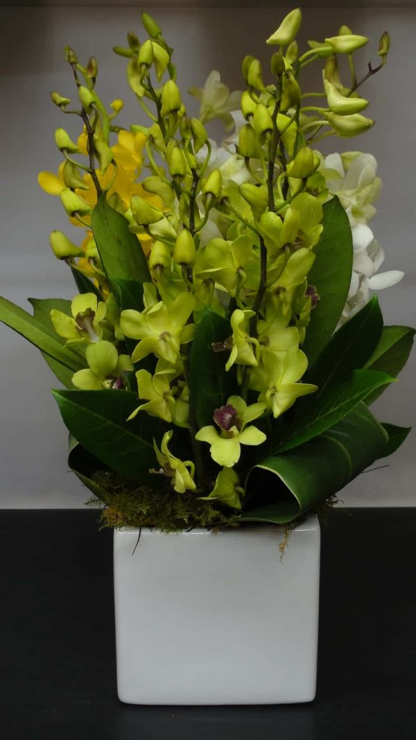 Ferntree Gully & Upper flower delivery