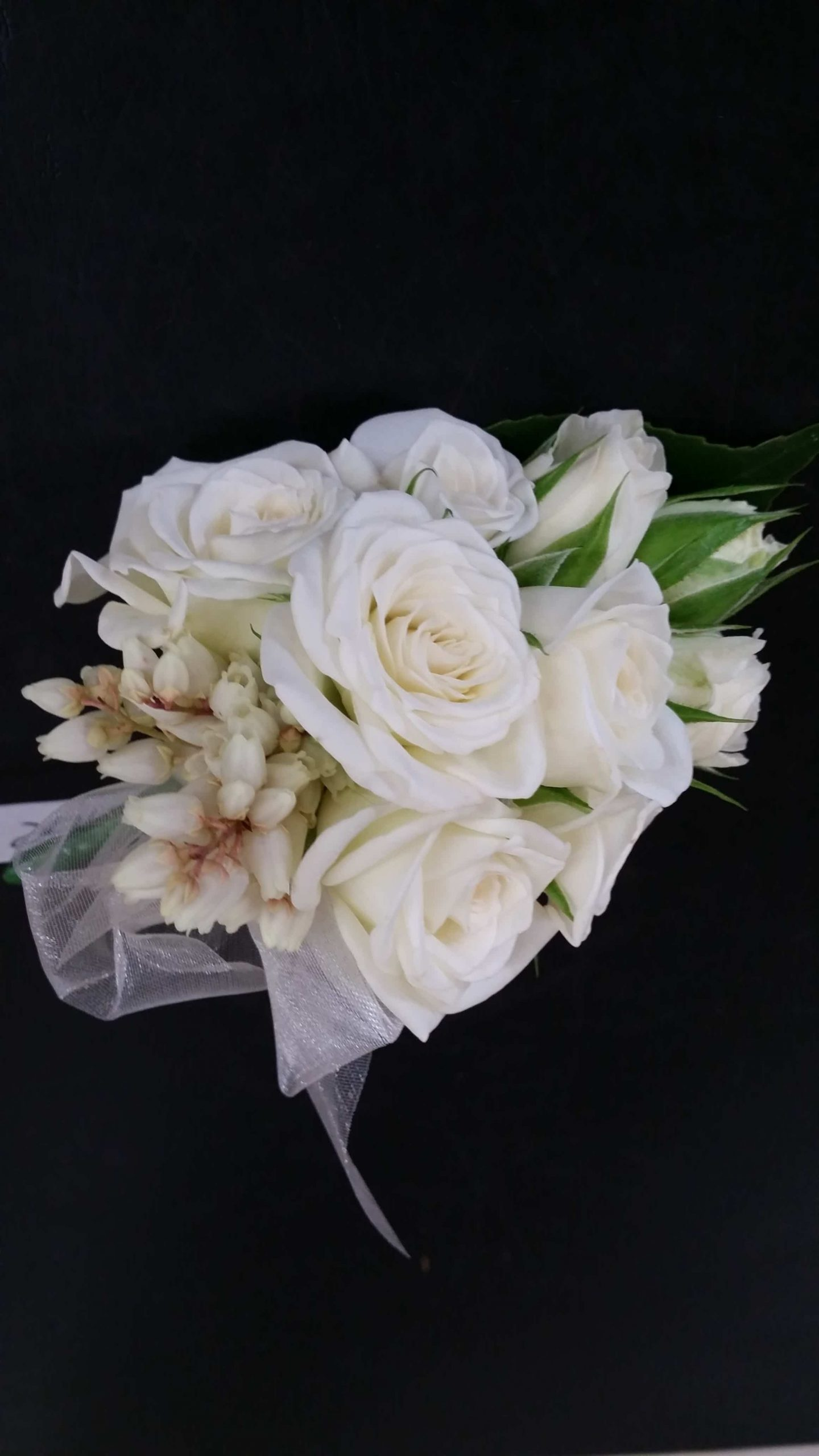 - image F.C.B.5-e1533082158514-scaled on https://theflowermerchant.com.au