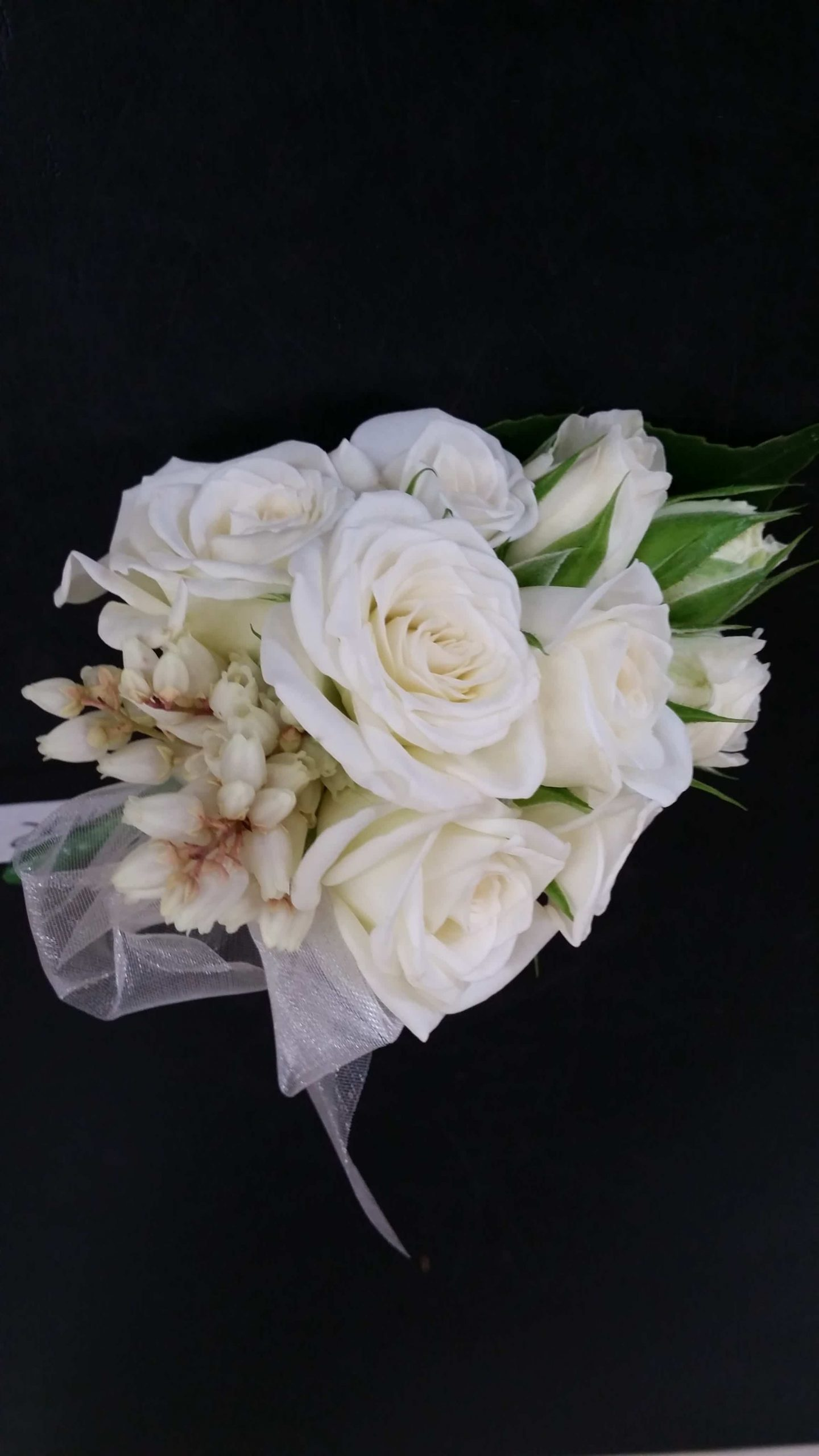 - image F.C.B.6-e1533082193513-scaled on https://theflowermerchant.com.au
